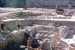 8.Jerusalem-63-Armenian-GardenD.-Tushingham-director1