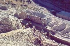 1.Jersusalem-63-K.Kenyon-director-Mt.-Ophel-step-trench-S.E.-slope.1