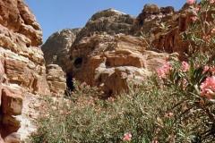 cSearightpPetra12-Petra-1963-5