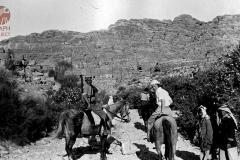cSearightpPetra2-Petra-1931-2
