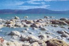 cSearightpPostcard13-Dead-Sea-1965-postcard