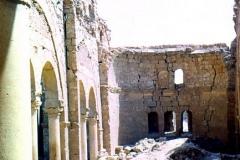 Resafa-6-1973-basilica