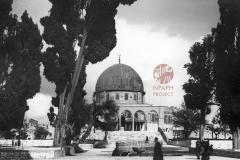 14.-Mosque-of-Omar-postcard-1931