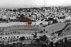 2.-Jerusalem-1931-panorama-2.-postcard