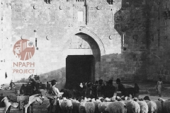 5.-Jerusalem-1931-Damascus-Gate-postcard