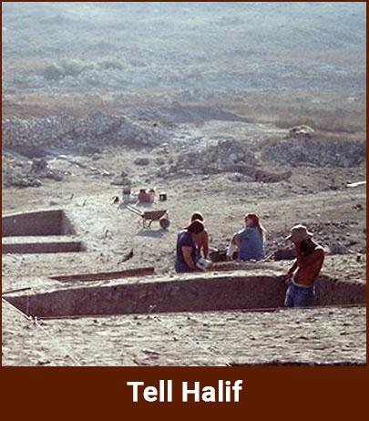 tell-halif
